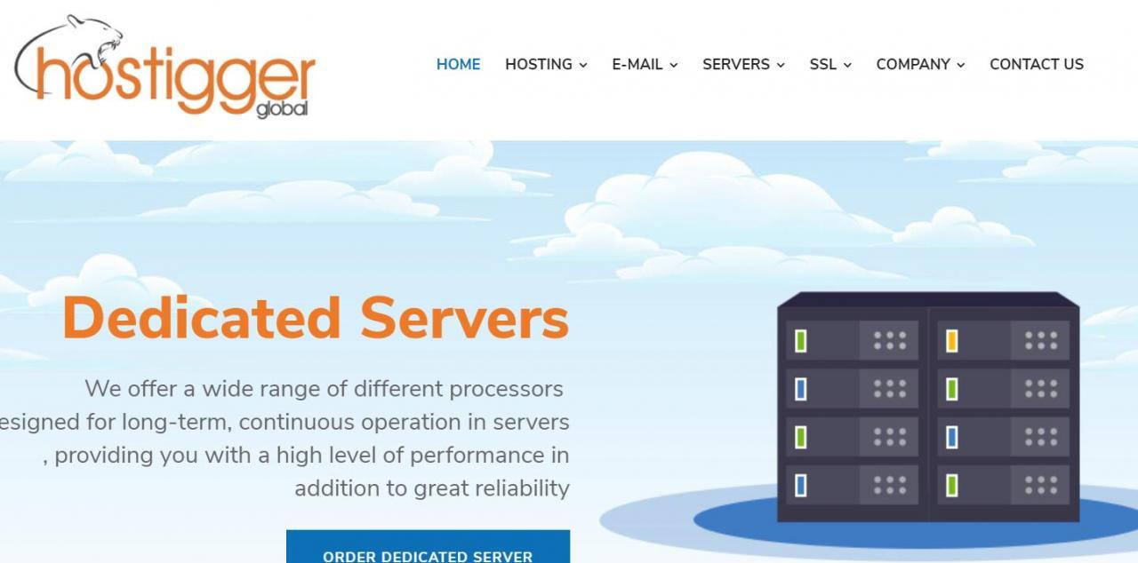 Hostigger:0/年/8GB内存/100GB SSD空间/10TB流量/KVM/土耳其/芝加哥
