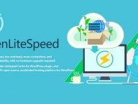 OpenLiteSpeed  WordPress Mysql/MarriDB 官方一键安装脚本