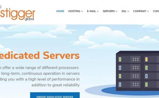 Hostigger:$100/年/8GB内存/100GB SSD空间/10TB流量/KVM/土耳其/芝加哥